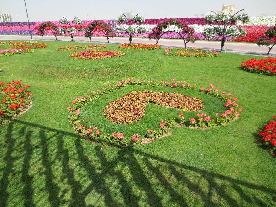 The ticket price of the Dubai Miracle Garden became 30 AED