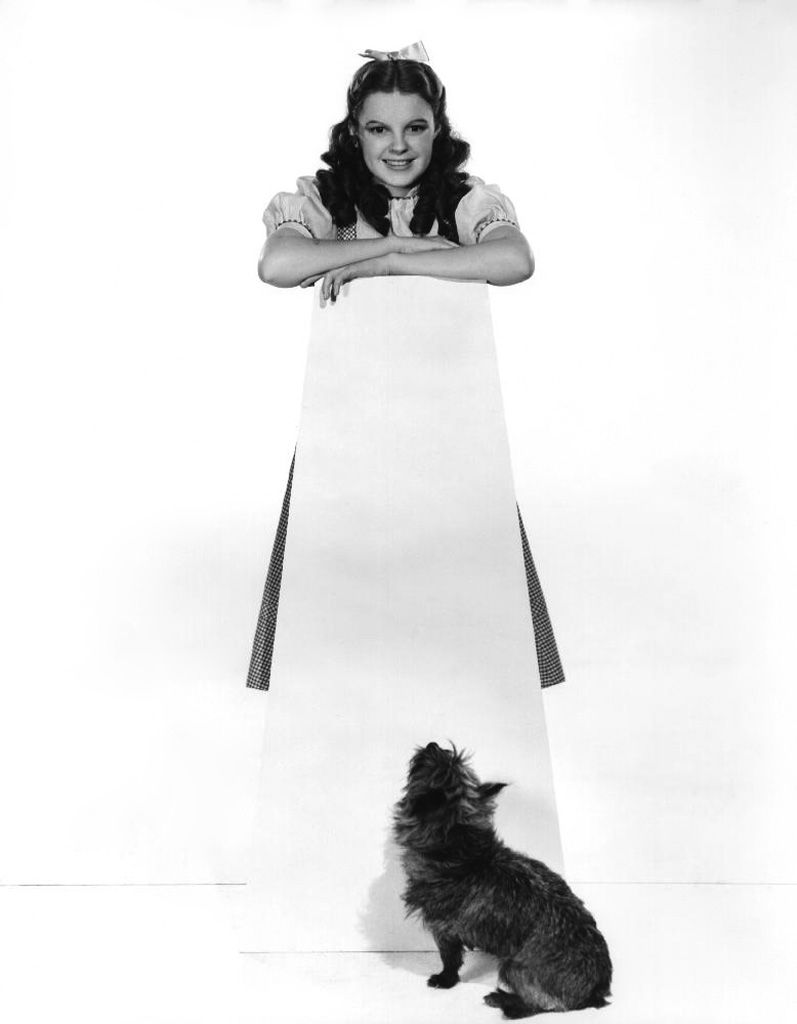 Judy Garland and Toto - The Wizard of Oz
