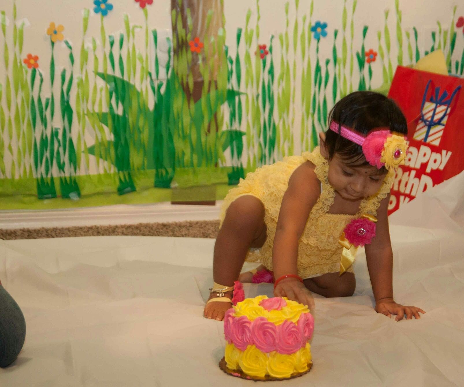 First Birthday Diy Decor Crepe Paper Grass Backdrop Cake Smash