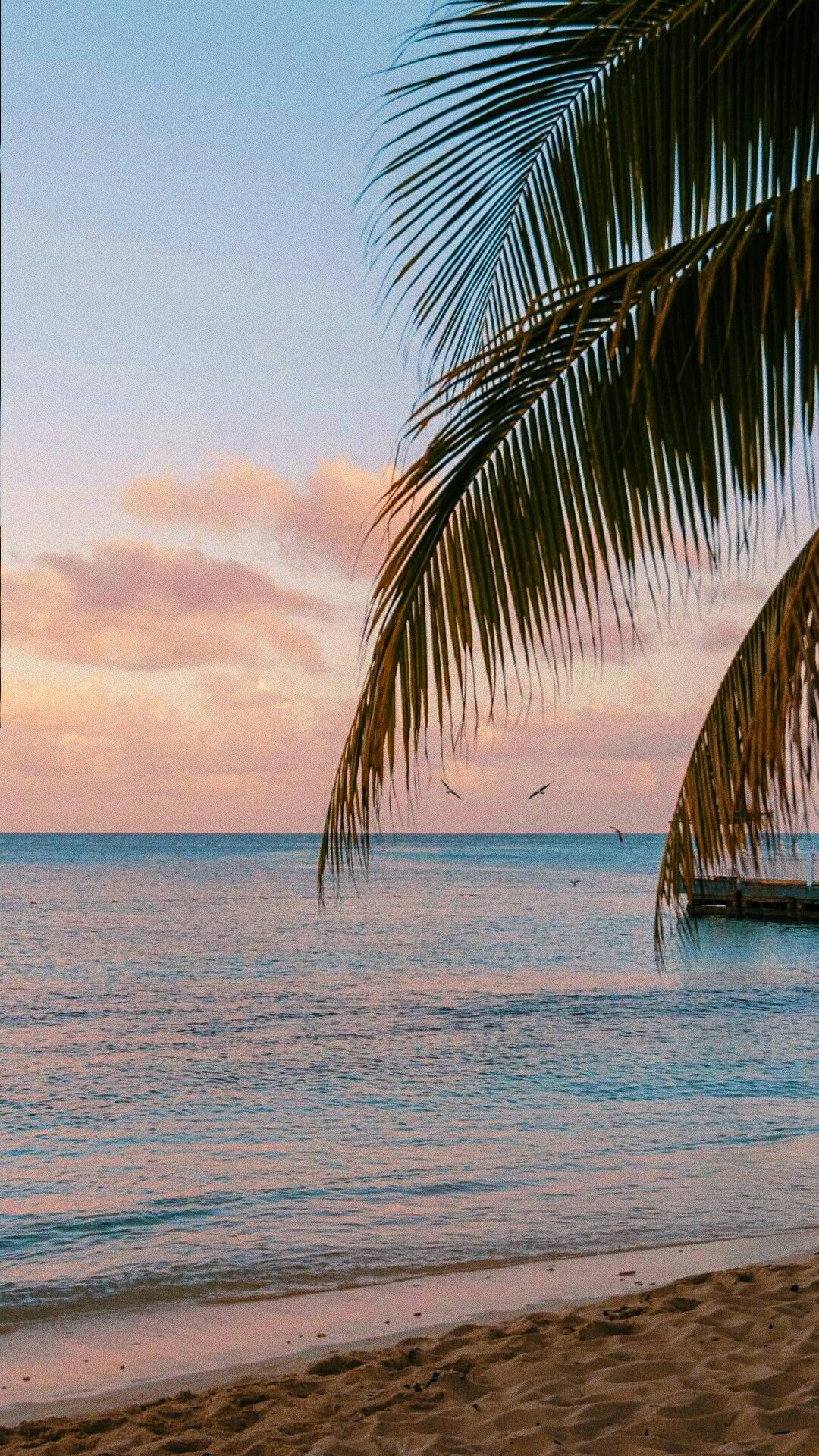 Pink Color Colorful Pastel Aesthetic Wallpaper Pretty Sweet Background Sea Hawaii Background Nature Wallpaper Pastel Aesthetic