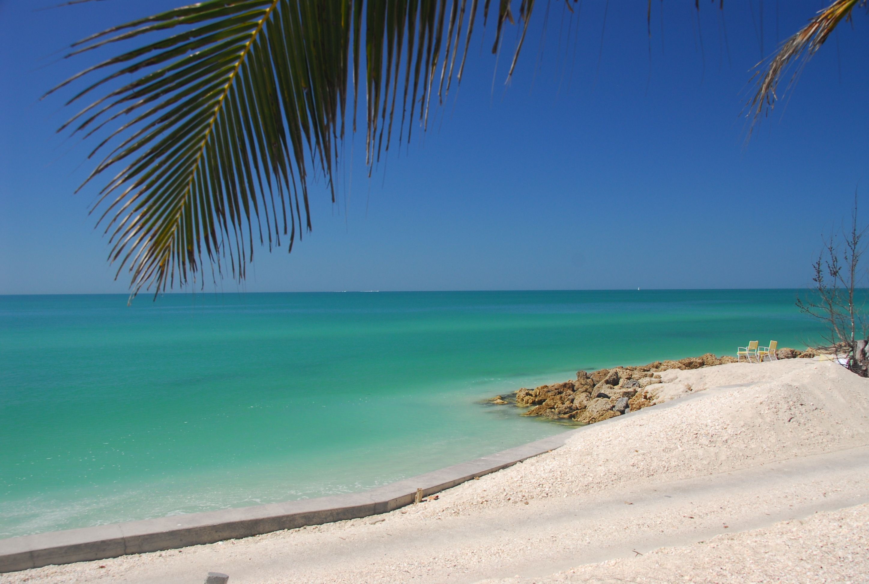 Siesta Beach By Arc Design Now Winchesterwood On A House Rent My House In Florida Siesta Key Beach Siesta Key Florida
