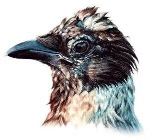 Crow Artwork - Bing Images