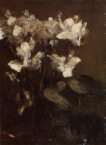 Flowers, Cyclamens - Henri Fantin-Latour