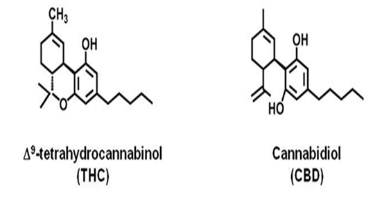 Does anyone know the structure of THC?