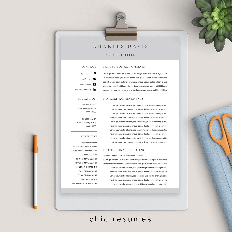 Senior management resume in gray executive resume