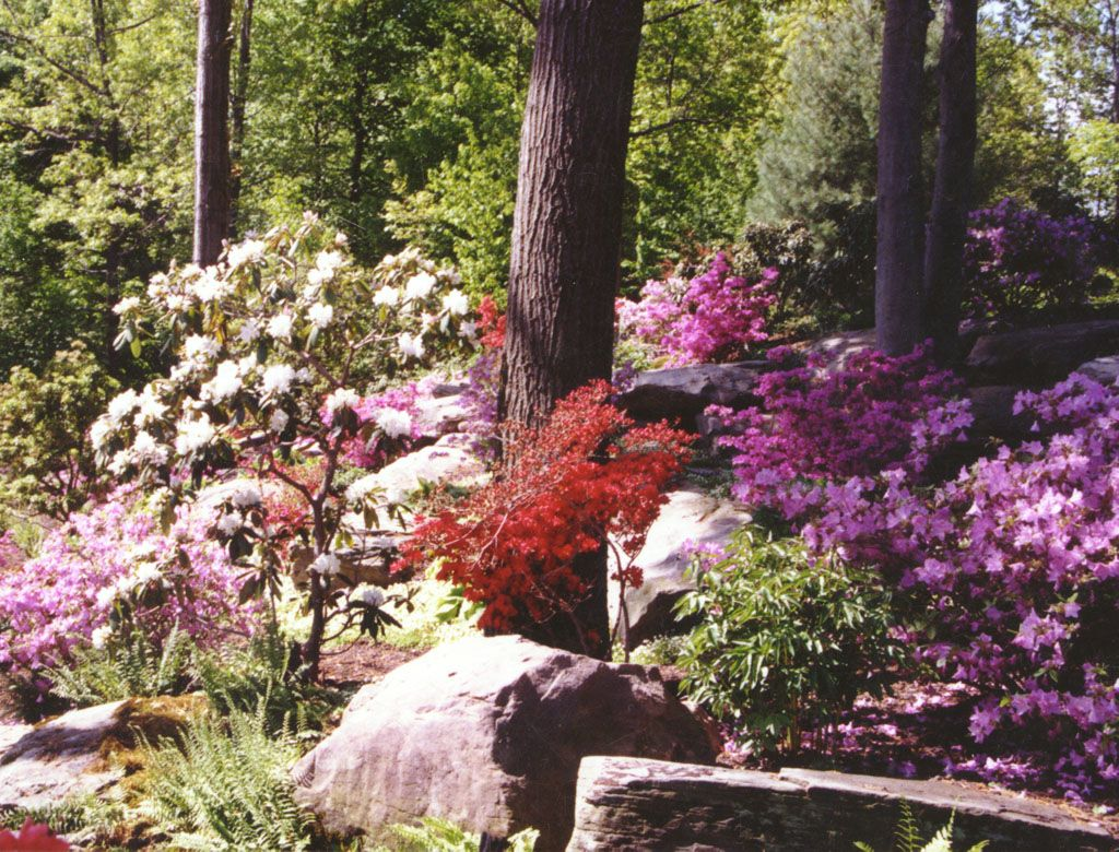 Pathways amp steppers sisson landscapes - Natural Landscaping In Bergen County Nj This Natural Pa Colonial Stone Boulder Rock