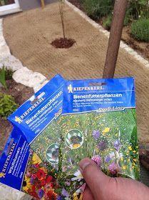 So legt man eine Wildblumenwiese an. Schritt für Schritt - einfach erklärt. So lockt man Bienen in seinen Garten. #beetanlegen