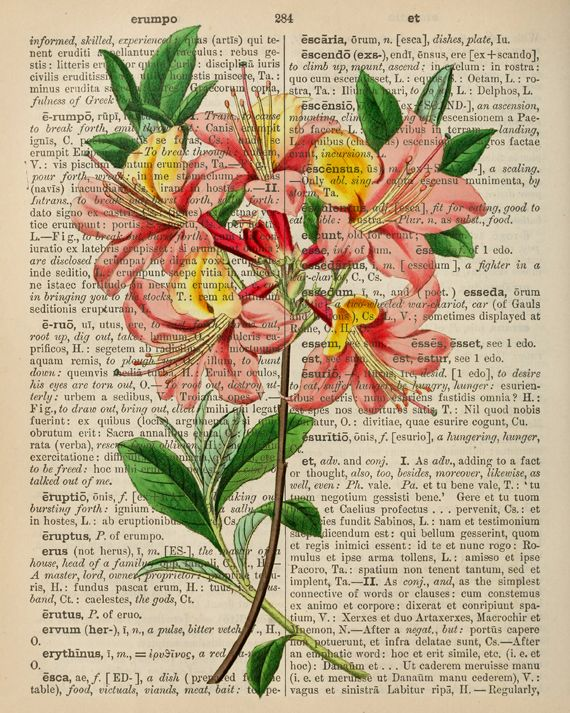 free printable dictionary art print or just print a picture on an old page from an encyclopedia - Free Printable Pictures