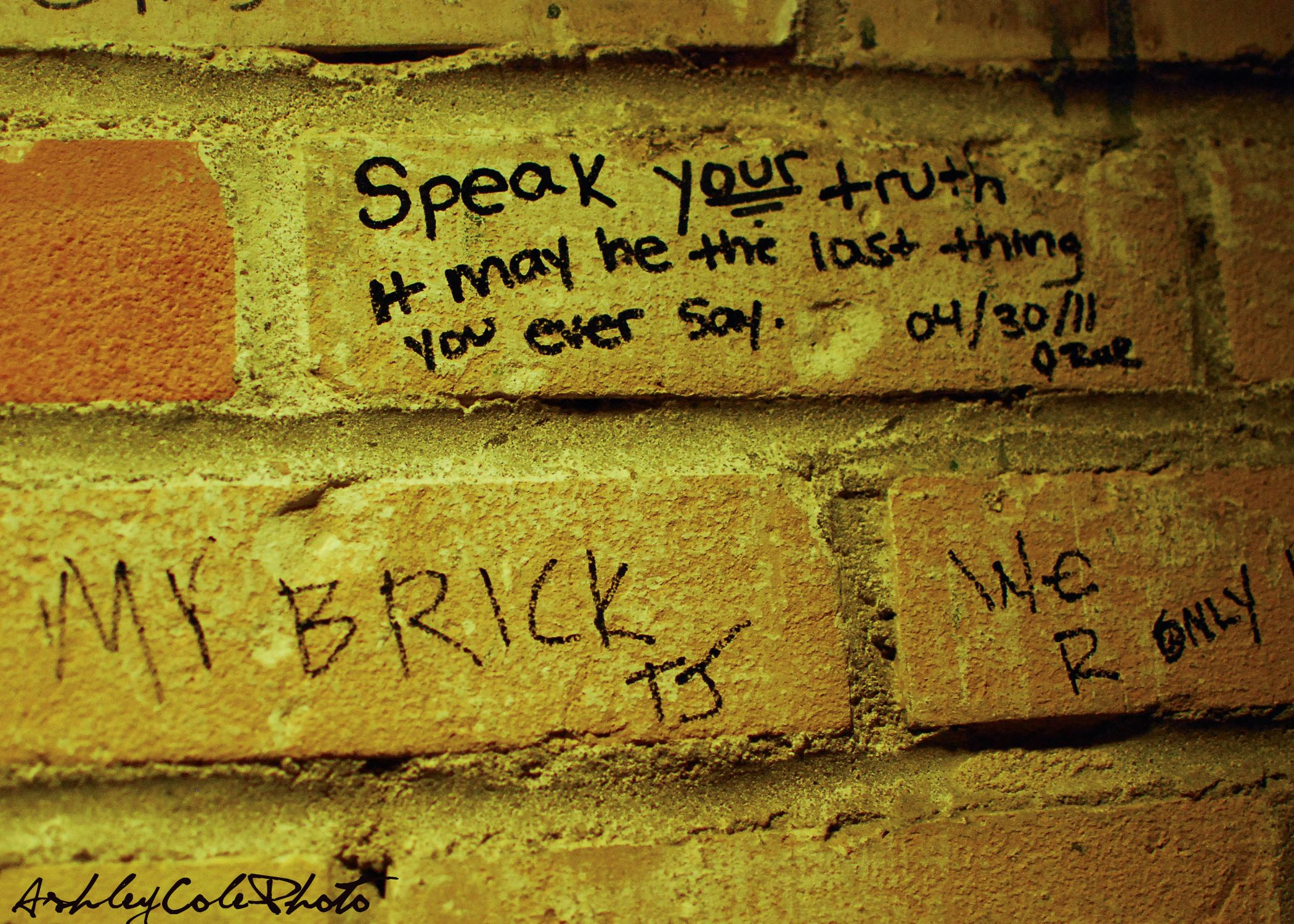 Speak your truth, it may be the last thing you ever say.  Bathroom Project  Ashley Cole Photo
