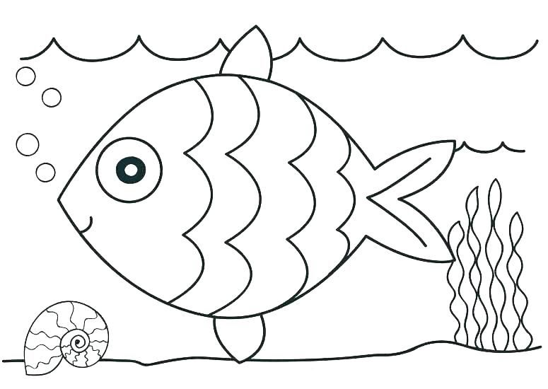 - Free Printable Ocean Coloring Pages For Kids Kindergarten Coloring Pages, Kindergarten  Coloring Sheets, Ocean Coloring Pages