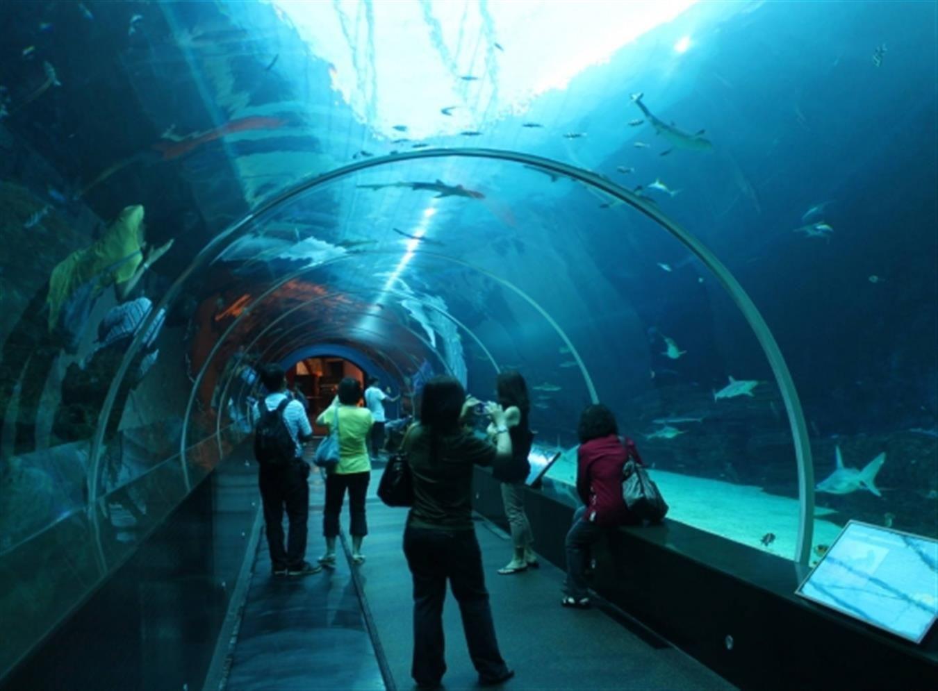 Sea Life London Aquarium London Moments Pinterest