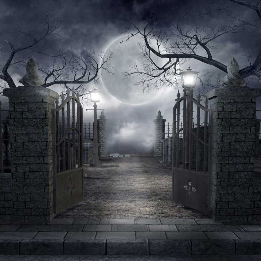Moon Cemetery Halloween Backdrop - 730 Pinterest Halloween - halloween backdrop