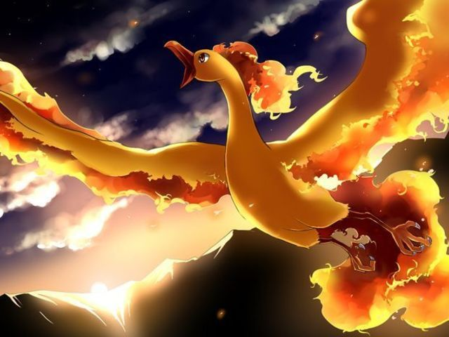 Which Legendary Bird Is Your Poke Totem Pokemon Pokemon