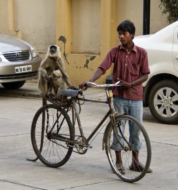 Back Seat Rider Calcutta India India Bike India India People