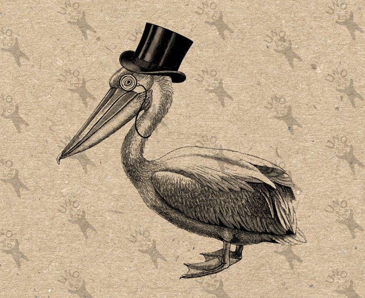 Vintage Pelican Top Hat Gentleman Bird Instant Download Picture Digital Printable Clipart Graphic Scrapbooking Home Decor Prints Etc 300dpi
