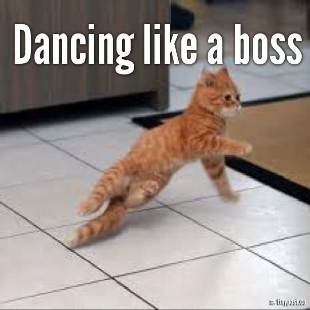 Funny Like A Boss Meme : Dancing like a boss goop pinterest funny quotes