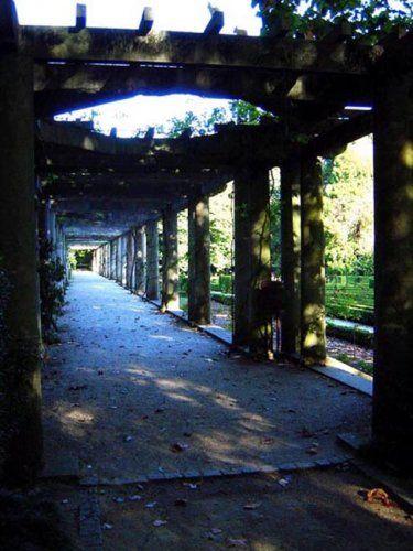 Serralves gardens