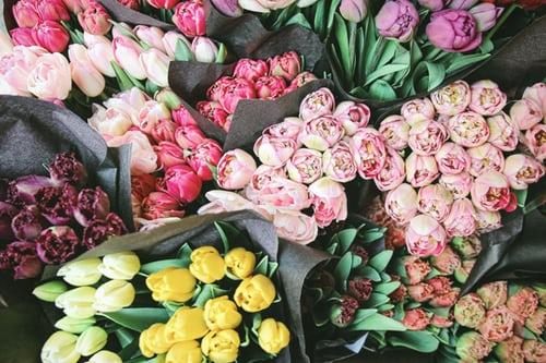 اجمل بوكيه ورد طبيعي صور اجمل بوكيه ورد طبيعي جميل Zina Blog Flowers Tulips Garden Flower Delivery