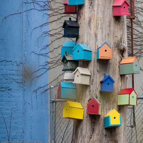 Fuglehus festet til stolpe