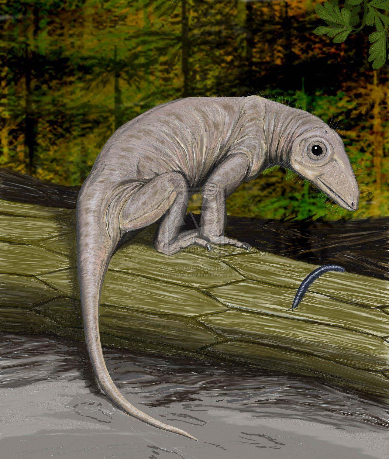 Dibgd S Deviantart Gallery Prehistoric Creatures Extinct Animals Paleo Art