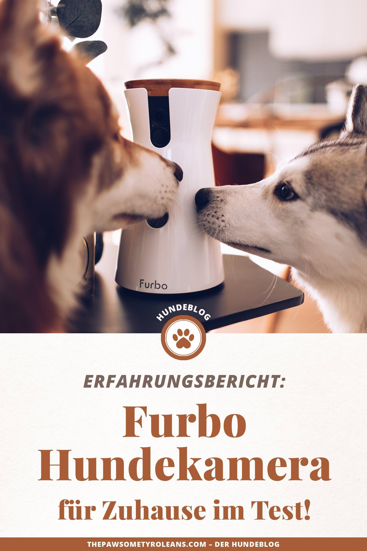Produktplatzierung Furbo Hundekamera Test Furbo Dog Camera Kaufen Furbo Hundekamera Erfahrungsbericht Hundekamera Fur Zuhause Hunde Hund Bellt Hunde Sachen