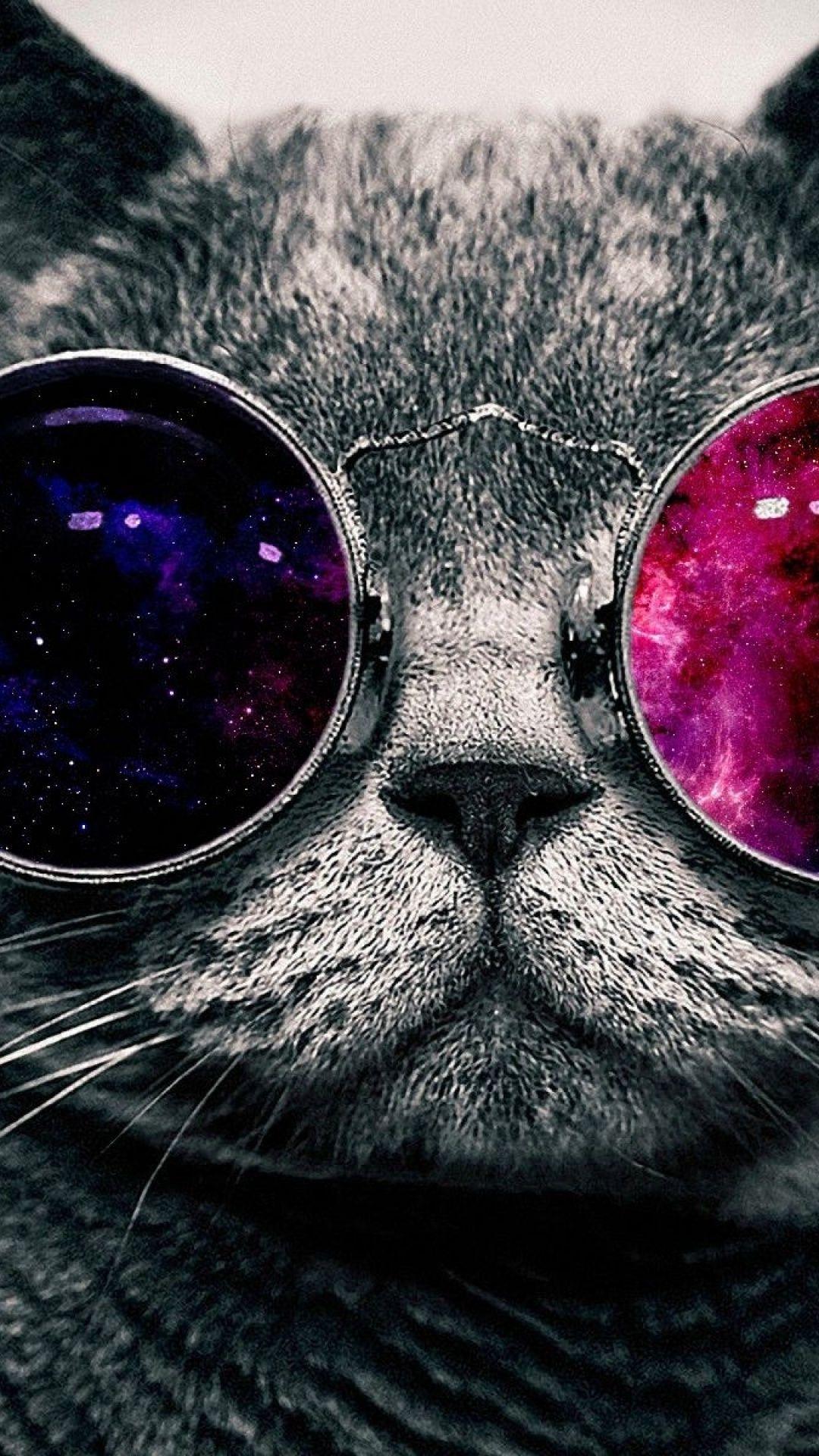 Galaxy Cat Iphone Wallpaper Backgrounds Wallpapers Pinterest