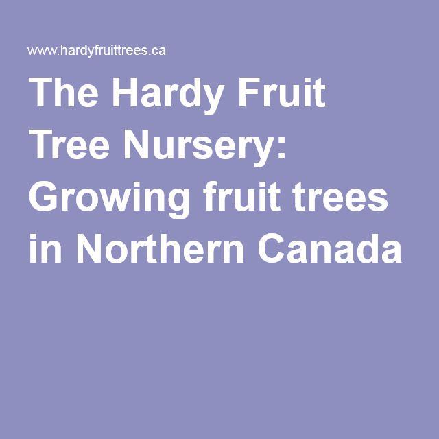The Hardy Fruit Tree Nursery Growing Fruit Trees In Northern Canada Fruit Tree Nursery Fruit Trees Growing Fruit Trees