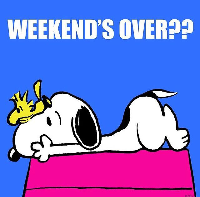Weekend S Over Snoopy And Woodstock Lying On Top Of Snoopy S