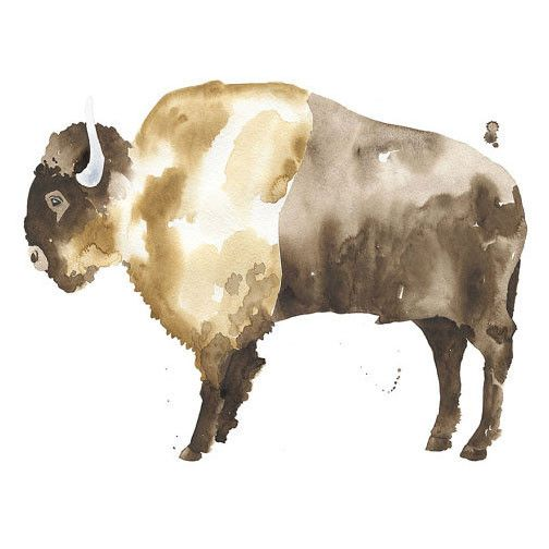 Buffalo Watercolor Print Buffalo Painting Buffalo Art Bison Art