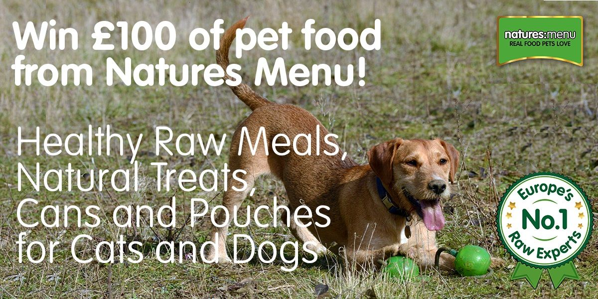 Win 100 Worth Of Food For Your Dog Or Cat Dogs Cats Dog Cat