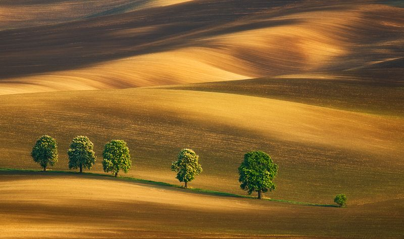 Kyjov Southern Moravia Czech Republic Natures At Its Best - The mesmerising beauty of moravian fields photographed by marcin sobas