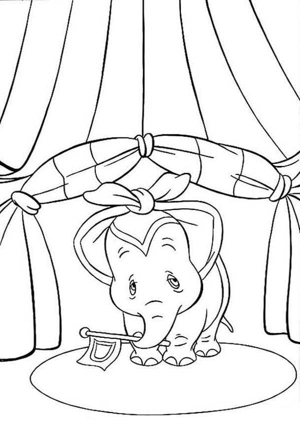 Dumbo The Elephant Holding A Flag Coloring Pages : Bulk ...