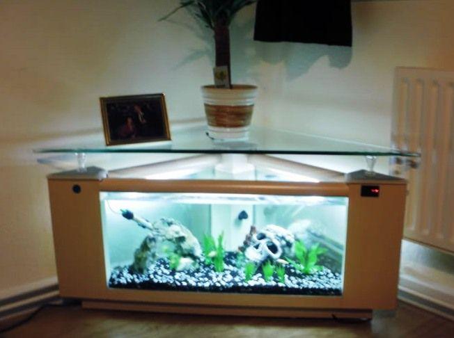 Corner aquarium coffee table aquatic turtle set up for Fish tank end table