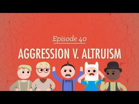 Aggression V. Altruism: Crash Course Psychology #40 - YouTube