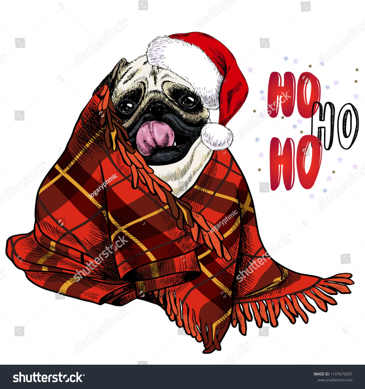 f9b95524c6a Hand drawn portrait of pug dog wearing santa hat and plaid blanket. Vector  Christmas poster. Xmas greeting card. Winter seasonal celebration.