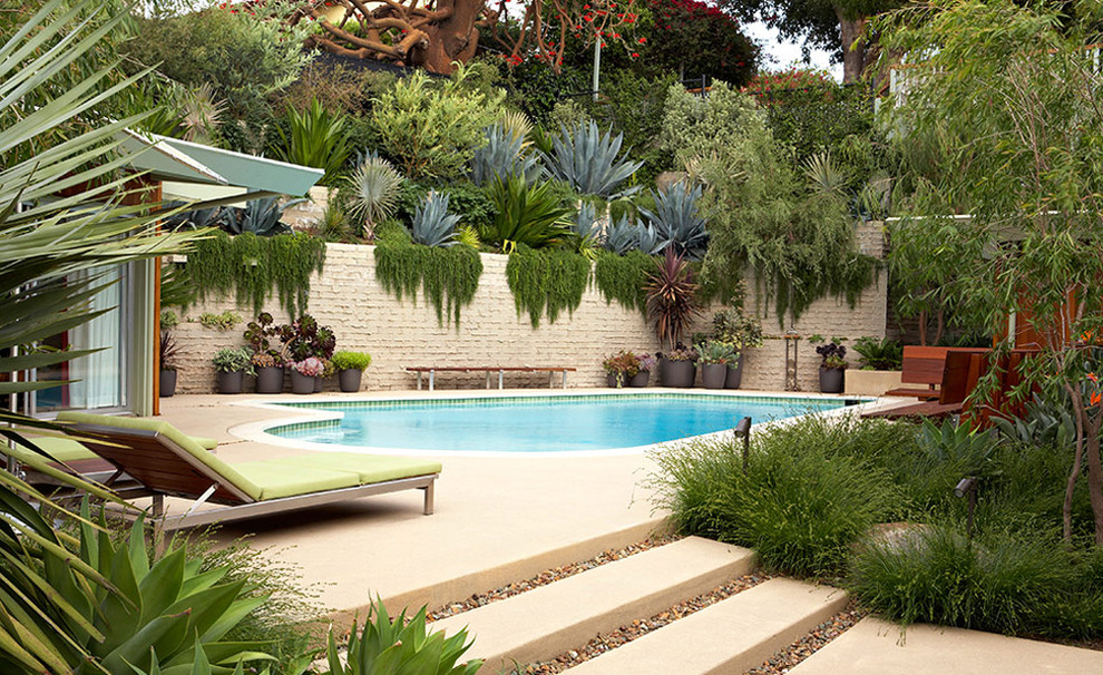 Mid Century Makeover Midcentury Pool Los Angeles By Lisa Gimmy Landscape Architecture House Makeovers Architecture Mid Century Modern Landscaping