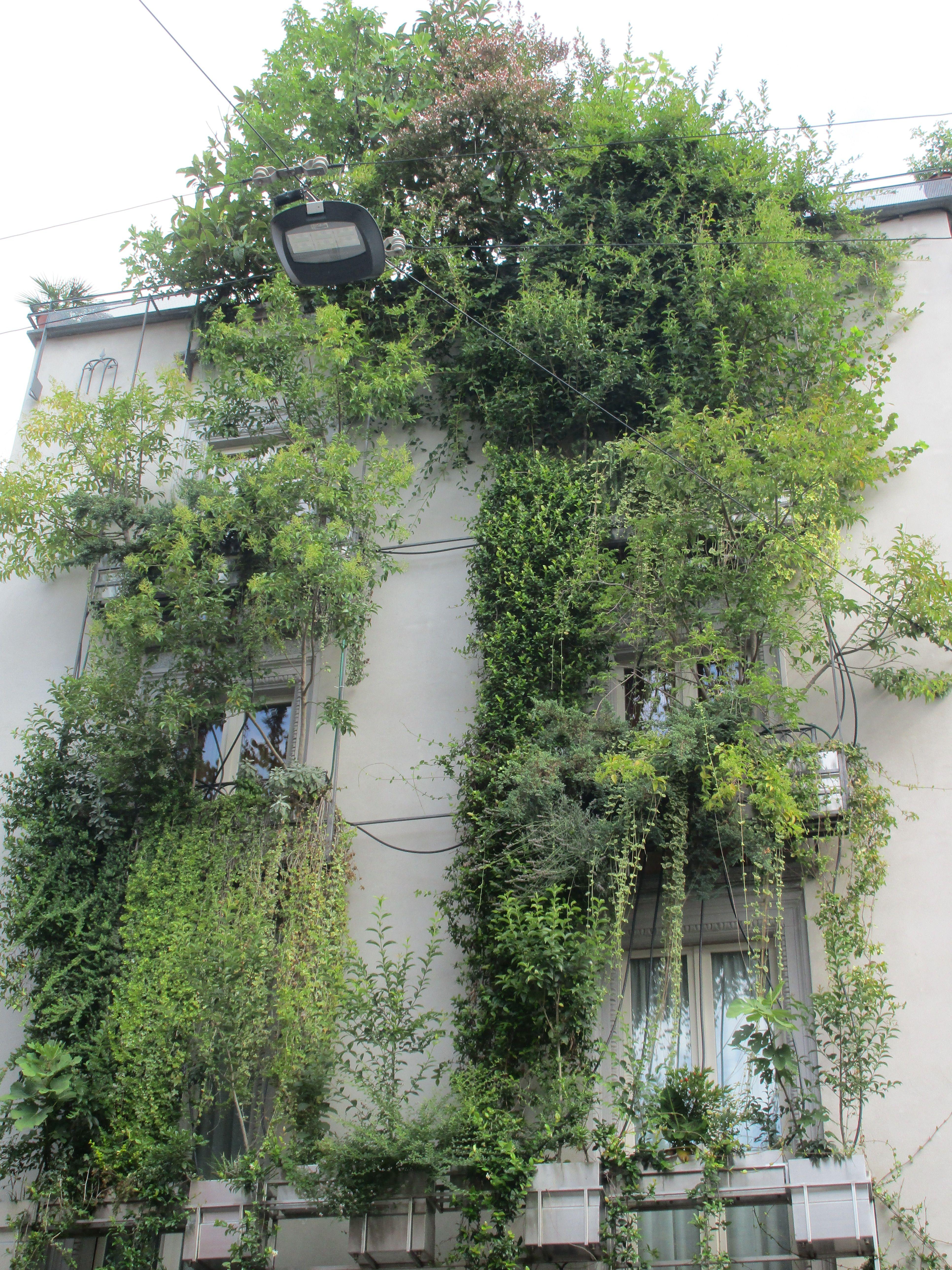 Landscaping facade