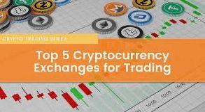 How to build a cryptocurrency portfolio