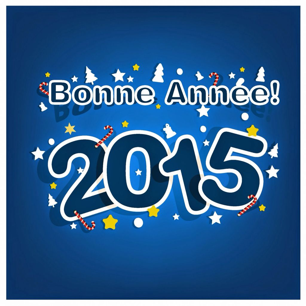 Bonne anne welcome 2015 pinterest happy new year 2015 bonne annee kristyandbryce Images