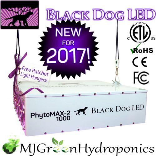 Top 12 Best 1000 Watt Led Grow Lights In 2020 Reviews Buyer S Guide Grow Lights Led Grow Led Grow Lights