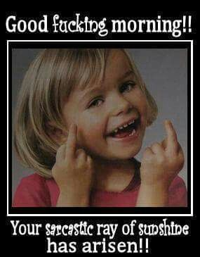 Pin By Perna Zeller Millstead On Tff Funny Good Morning Memes Morning Quotes Funny Good Morning Funny Pictures