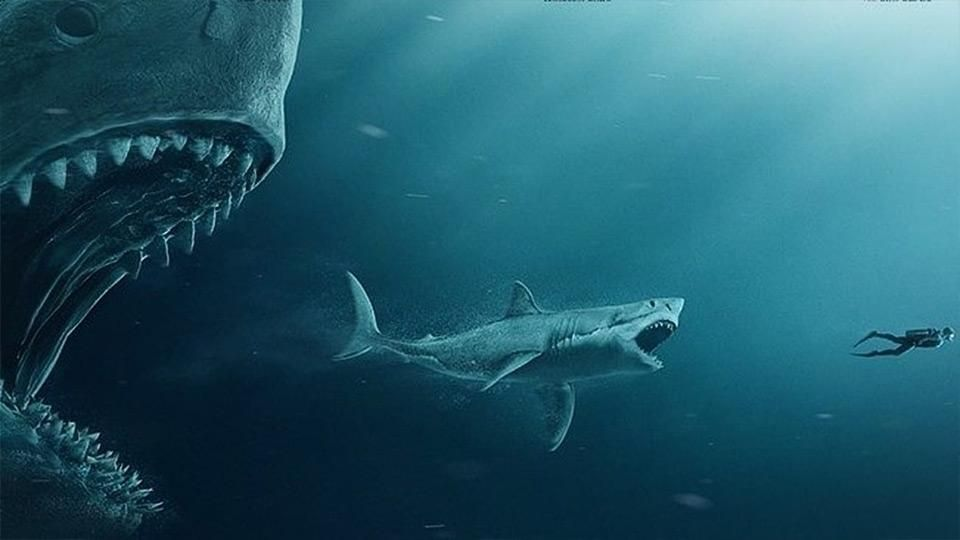Megalodon Reconstruction In Its Time The Shark Would Have Been Eating A Dwarf Species