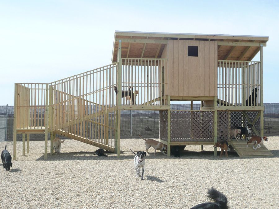 dog boarding kennel designs year with a warm loving pet - Dog Kennel Design Ideas