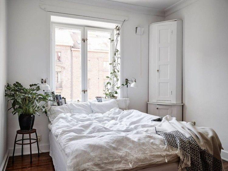 Bett unter Fenster Überblick über die wichtigsten Vor