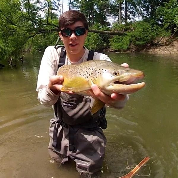 Mad River Brown Trout Www Simmsfishing Com Brown Trout Fishing
