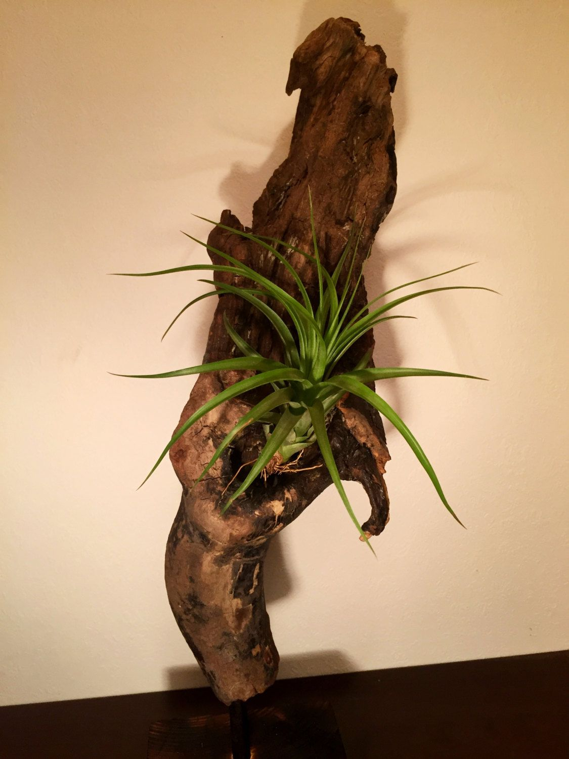 Sculpture with plant by HolzDinge on Etsy
