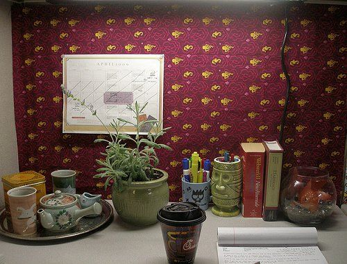 cubicles office cubicles and houseplant on pinterest amazing ideas cubicle decorating ideas office cubicle