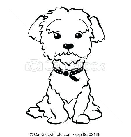 Cute Dog Drawing Recherche Google