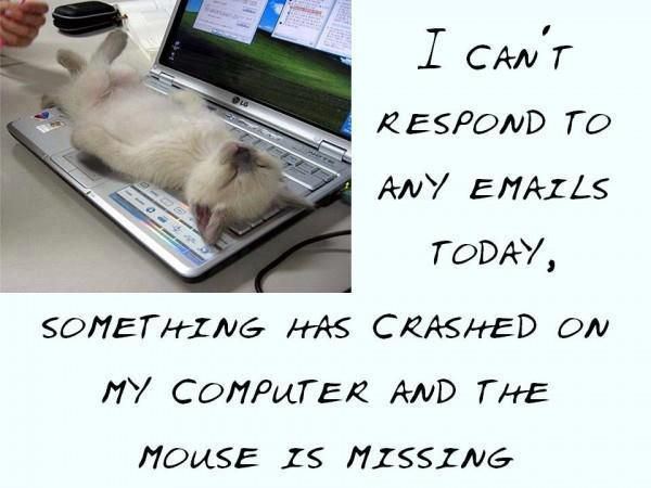 » I can't respond to emails today