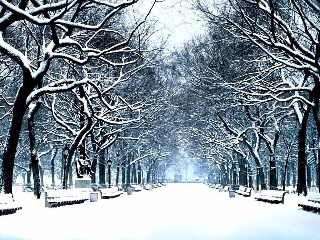 Winter Wonderland For Germany Winter Wonderland Background Winter Wonderland Background Images
